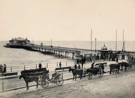 Carriages lined up outside the Victorian Pier