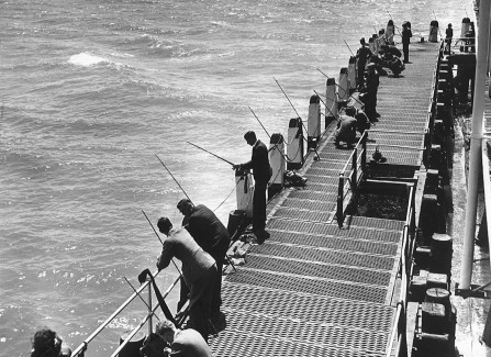 Fishing from the Pier landing stage