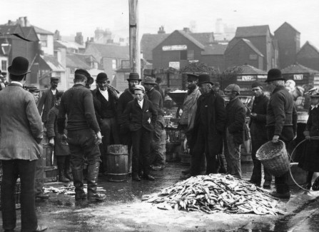 Local fishermen tipping out their dried catch to sell