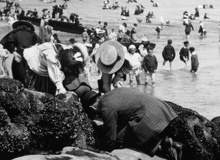 Victorian children rock pooling