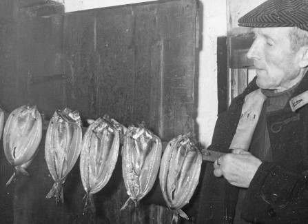 Research Document - Fishing Industry in Hastings