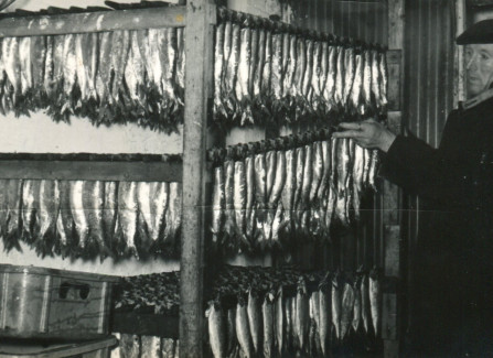 Local caught fish being smoked